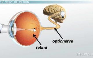 I vizi di rifrazione nome tecnico per i difetti della vista